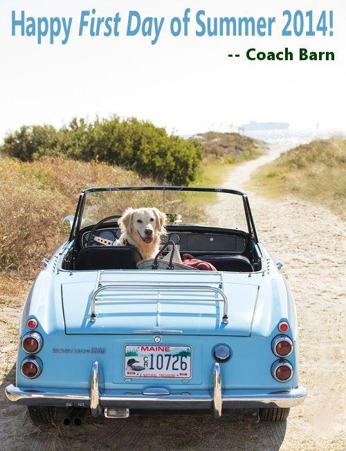 Happy Summer!! #coachbarn #summerfun