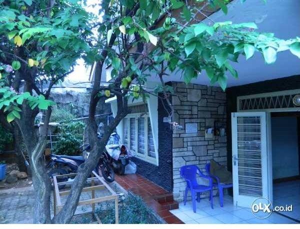 Rumah Asri Lokasi Strategis dijual di Roxy Jakarta Pusat  Lokasi di petojo Roxy, Luas Tanah 264 m2,  Luas Bangunan 260 m2, SHM, 4 Kamar Tidur, 3 Kamar Mandi, 2 Kamar Pembantu, 1 Kamar Mandi pembantu,Garasi 2 mobil, 5,75 Milyar (nego), Hub: 087774500023 – 082122425710, PIN 25B2A456