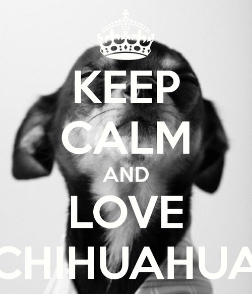 Love your chi