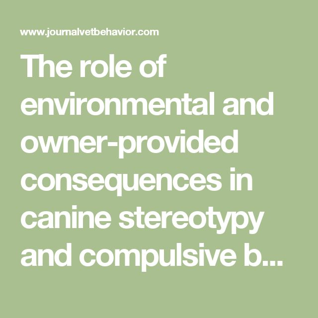 The role of environmental and owner-provided consequences in canine stereotypy and compulsive behavior - Journal of Veterinary Behavior: Clinical Applications and Research