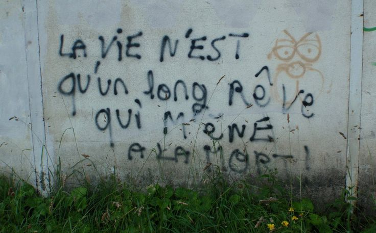 The Pyrenean mountains are full of stunning beauty, but we should remember those who make their livelihoods here in harsh conditions. This graffiti is on the wall of a now defunct tungsten mine in the French Department known as he Ariege. It translates as 'Life is only a long dream that leads to death'. Walk past it and a few moments later you are communing with nature again. Blog & book www.trekthepyrenees.com