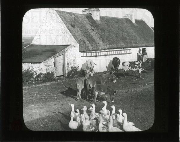 Home of a prosperous farmer, County Kerry, Ireland | saskhistoryonline.ca