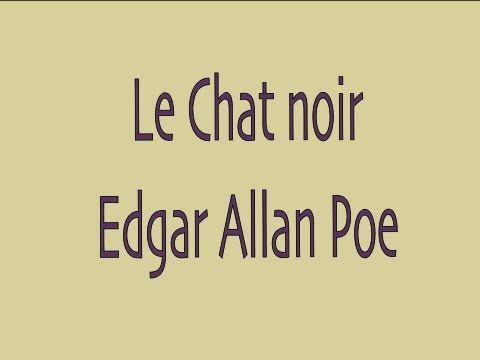 ▶ Livre audio : Le Chat noir, Edgar Allan Poe - YouTube