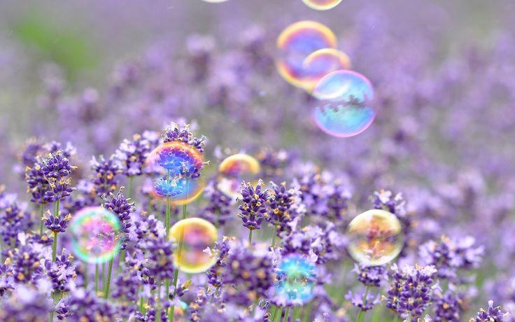 Мыльные пузыри, цветочки, фон