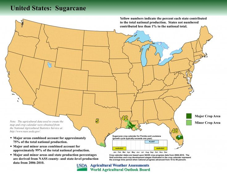 Fun Agfact Of Us Sugarcane Is Grown In Florida With Grown In Louisiana See The Map