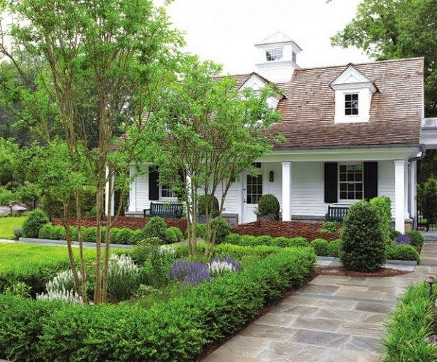 Love the boxwood around the trees: