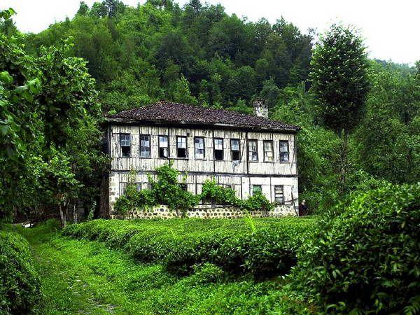 Arhavi köy evi #houses #green