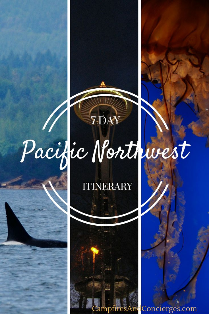 Pacific Northwest 7-Day Itinerary Seattle, Vancouver, Whistler Amtrak, Whale Watching, Aquarium #pnw #pacificnorthwest