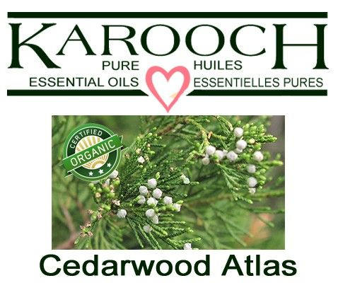 Cedarwood Atlas Organic