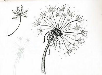 Best 25 flower line drawings ideas on pinterest flower for Flower line drawing tumblr
