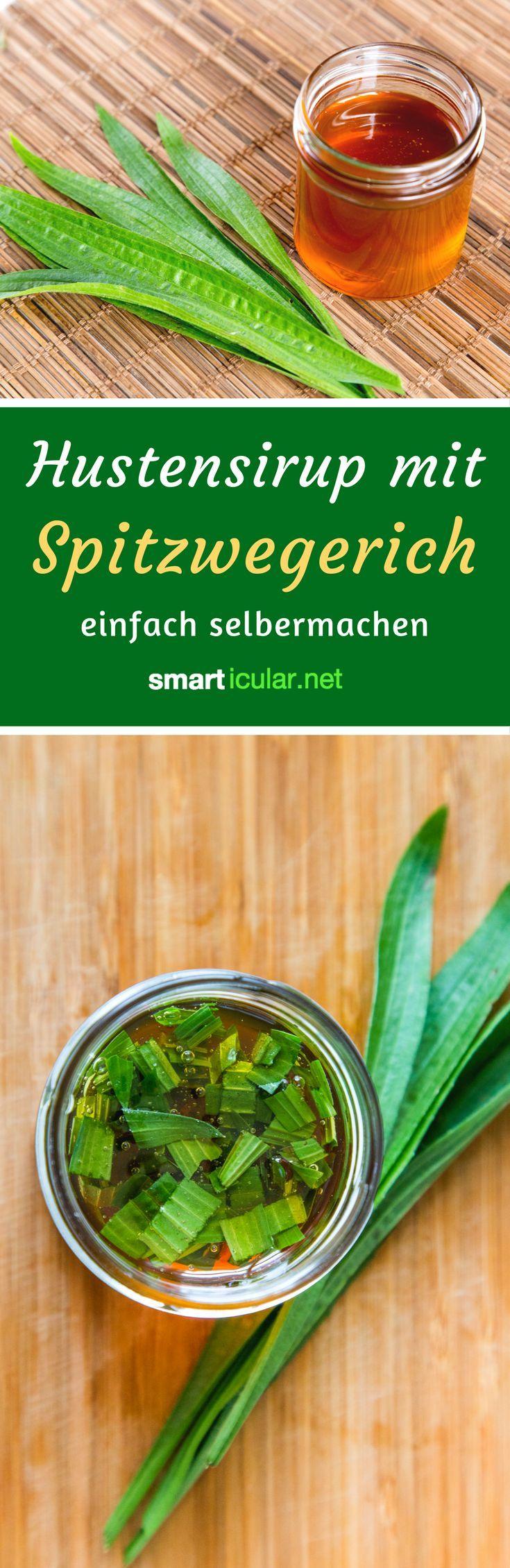 Spitzwegerich-Sirup gegen Halsschmerzen selber machen mit Honig