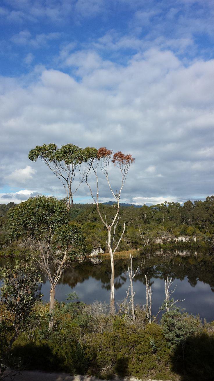 Pioneer Lake at Pioneer (Dorset) North East Tasmania