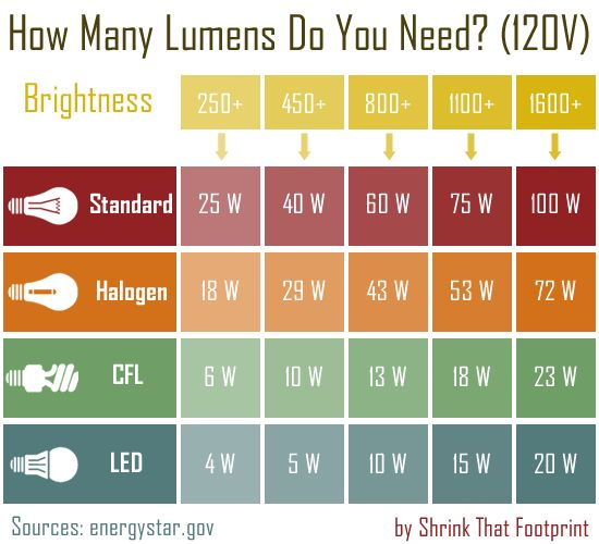 Chart comparing light output of light bulb types - put in phone for shopping