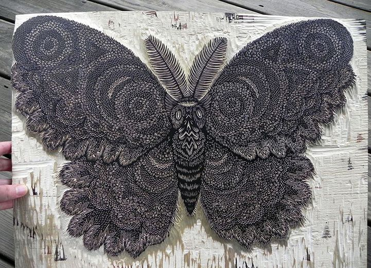 Meticulous Hand-Carved Wood Print of a Giant Moth | News Design List
