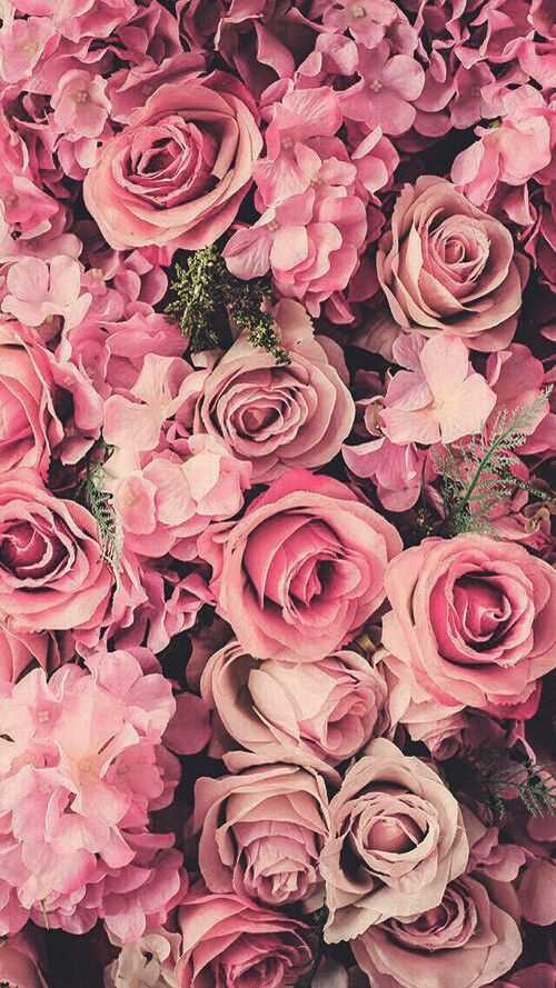 best 25+ pink floral background ideas on pinterest | vintage phone