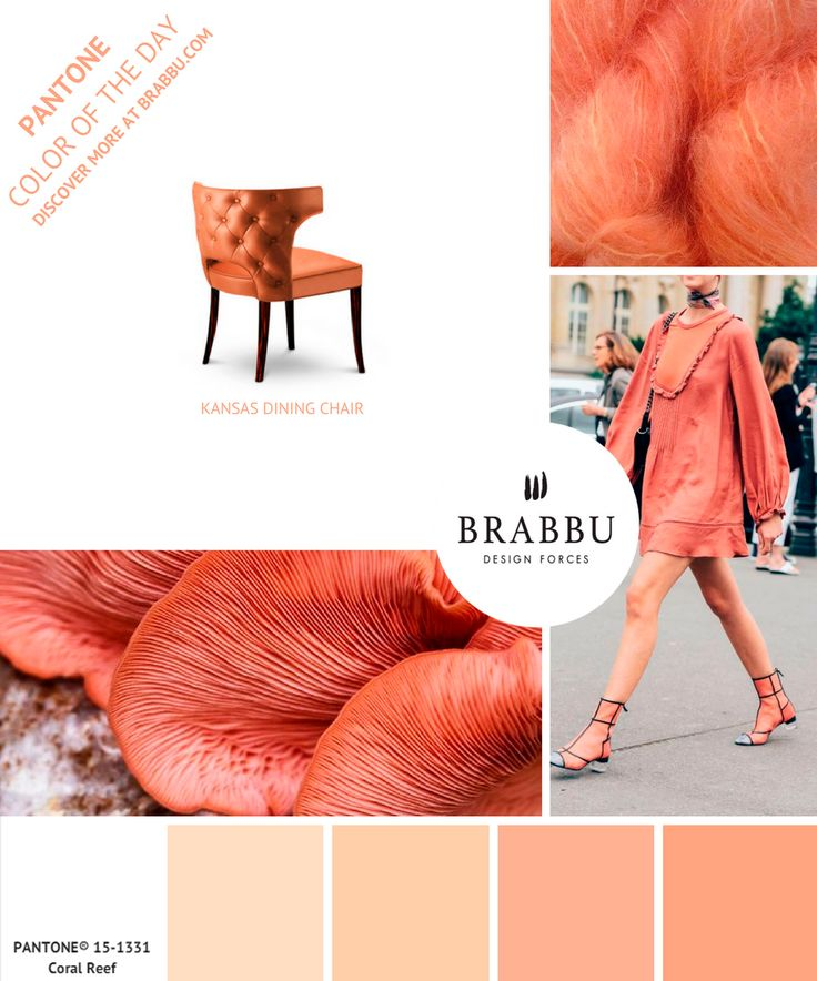 @pantonecolor Color of the Day: Coral Reef | Mood Boards. Color Trends. #colors #pantone #moodboard #interiordesign Discover more at: https://www.brabbu.com/moodboards/