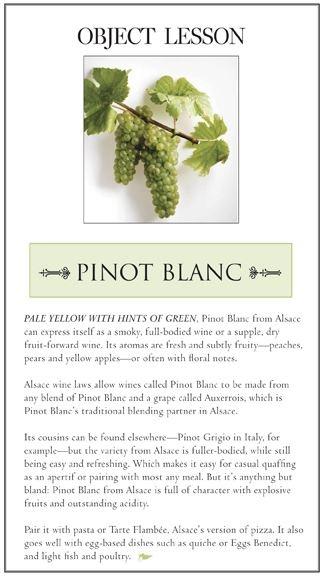 Alles wat je moet weten over #pinot blanc