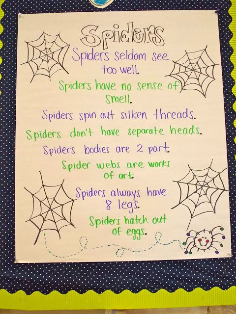 109 best spiders images on pinterest spiders kid halloween and october mapped out and spiders and your chance to win ccuart Choice Image