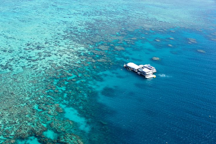 https://flic.kr/p/T7hUnn | Cairns, Australia - Norman Reef | The Great Barrier Reef is the world's largest coral reef system composed of over 2,900 individual reefs and 900 islands stretching for over 2,300 kilometres over an area of approximately 344,400 square kilometres. The reef is located in the Coral Sea, off the coast of Queensland, Australia.  The Great Barrier Reef can be seen from outer space and is the world's biggest single structure made by living organisms.[6] This reef…