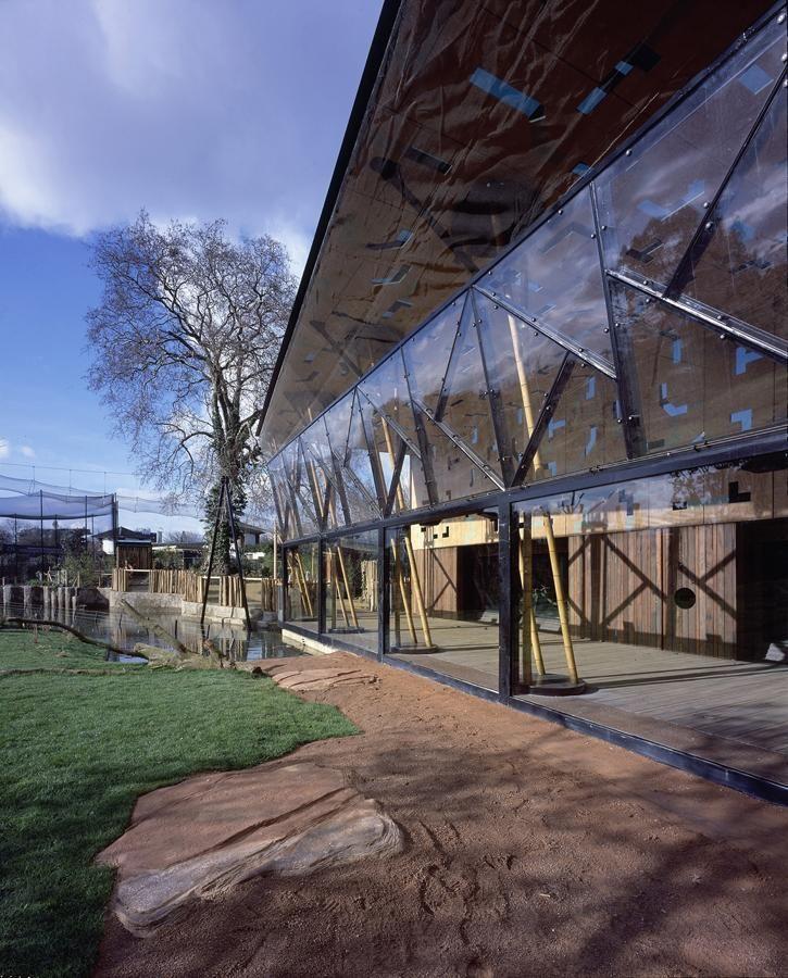 Gorilla Kingdom London Zoo