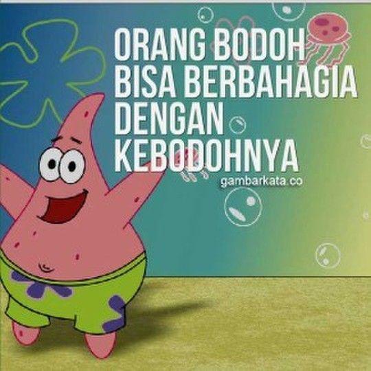 Cekidot Kata Kata Bijak Film Spongebob Squarepants Bijak Kata Kata Motivasi Ungkapan Lucu