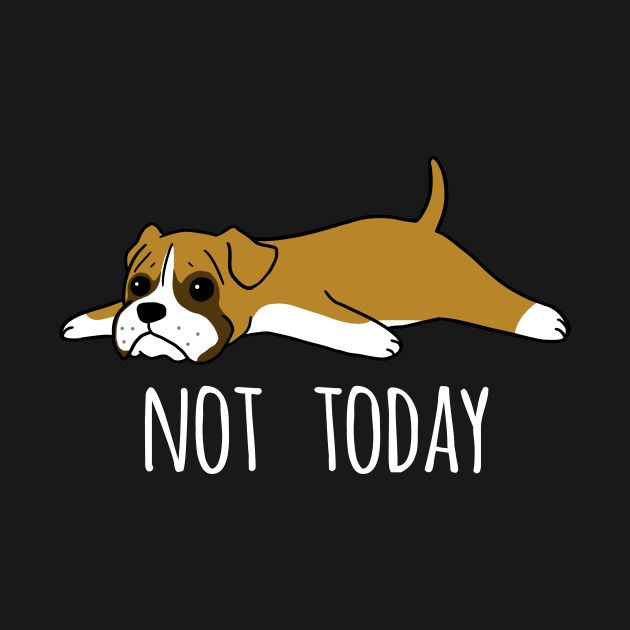 Check Out This Awesome Funny Not Today Boxer Design Boxer Dogs