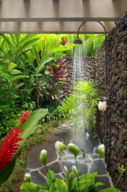 How to grow a tropical garden.beautiful outdoor shower