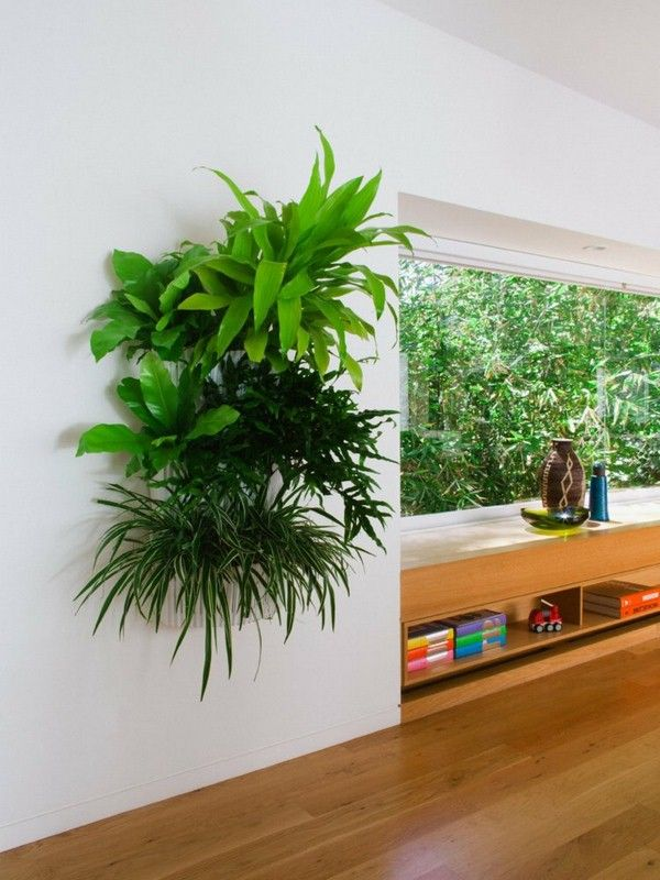 hanging plants as indoor decoration | decor 10 creative home