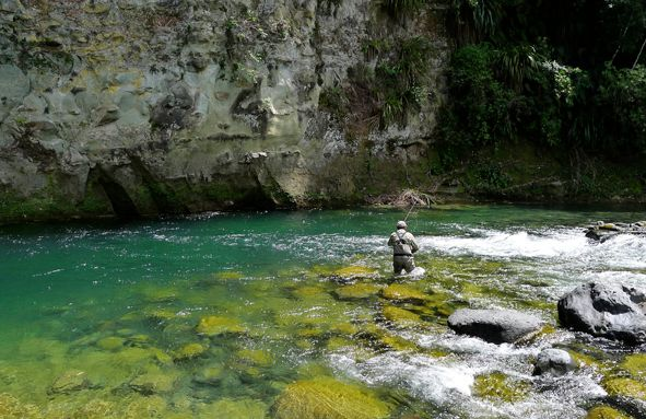 The #TongariroRiver is a premier fly #fishing water and is the most fished river in the country with a world-wide reputation for the size, number and vigour of the #trout and the challenge they present to #anglers ! http://www.nzfishing.com/FishingWaters/Taupo/TPFishingWaters/TPTongariro.htm