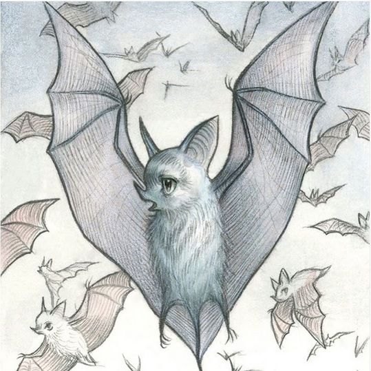 Bat entry by Mab Graves for Drawlloween Day 14
