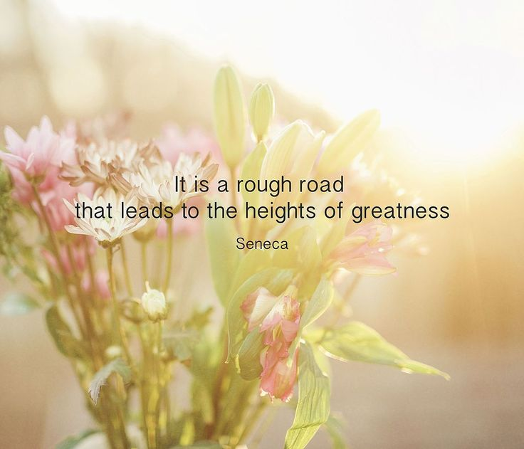 It is a rough road that leads to the heights of greatness. (Seneca the Younger, Letter LXXXIV: On gathering ideas, line 13)