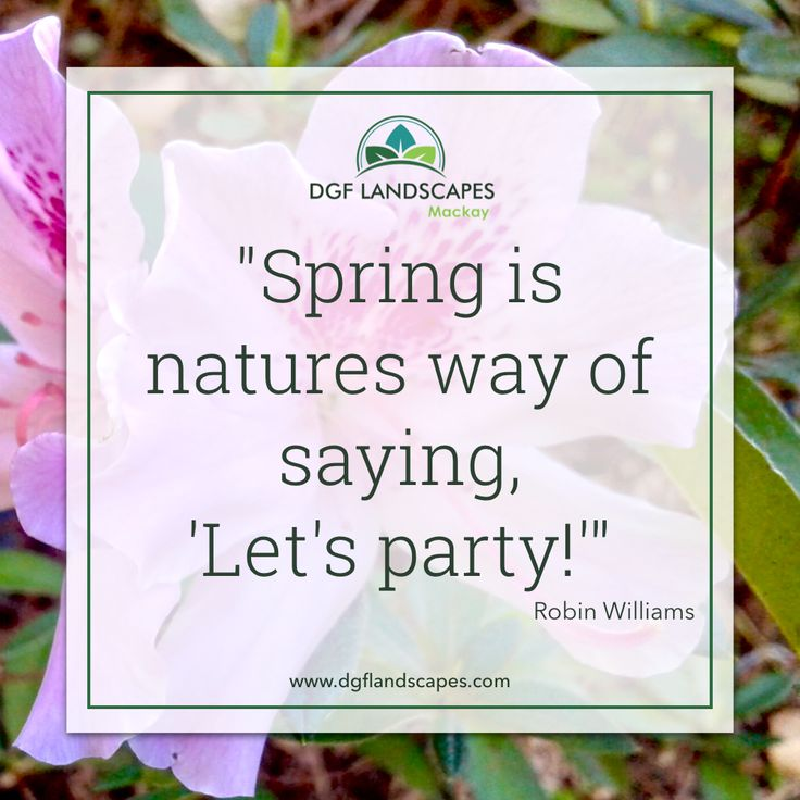 """""""Spring is natures way of saying, 'Let's Party!'"""" - Robin Williams  #nature #naturequotes #gardenquotes #robinwilliams"""