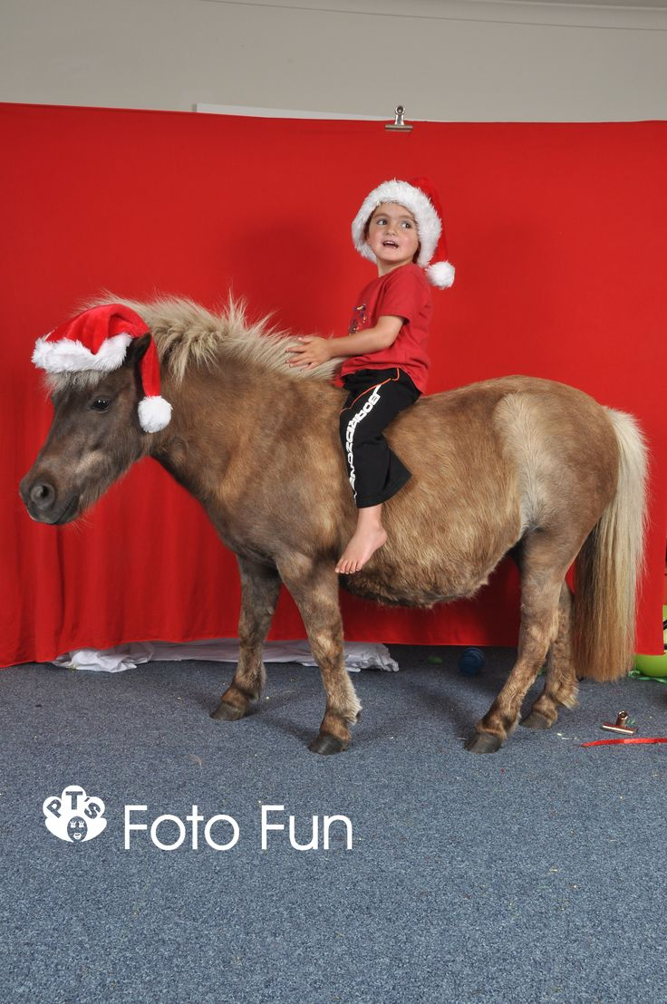 Photo session with pony at Little Einsteins Educare, Cambridge, 2011