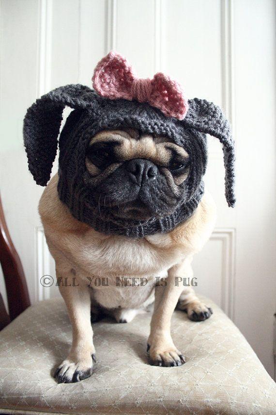{bunny pug}Puggies Pics, Bunnies Baby, Animal Baby, Pug-Dog, Pugs Bunnies, Bunnies Pugs, Baby Animal, Baby Dogs, Pugs Life