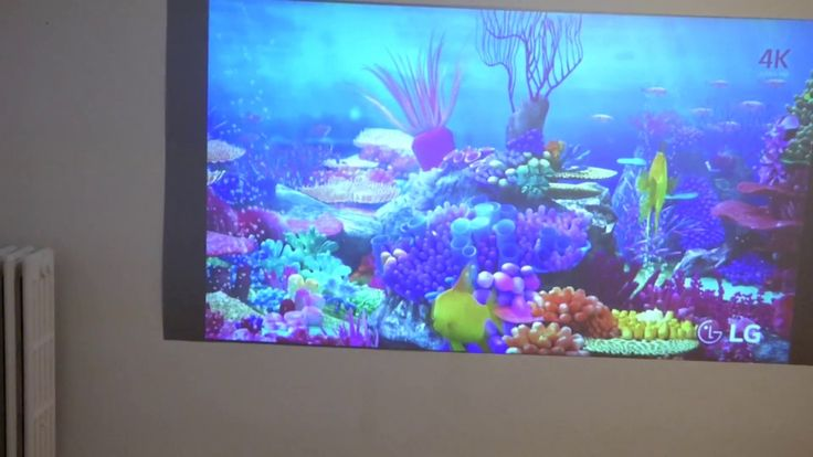 YOU CAN TREAT YOUR PROJECTION SCREEN LIKE YOUR TV AND WATCH IT WITH THE ...