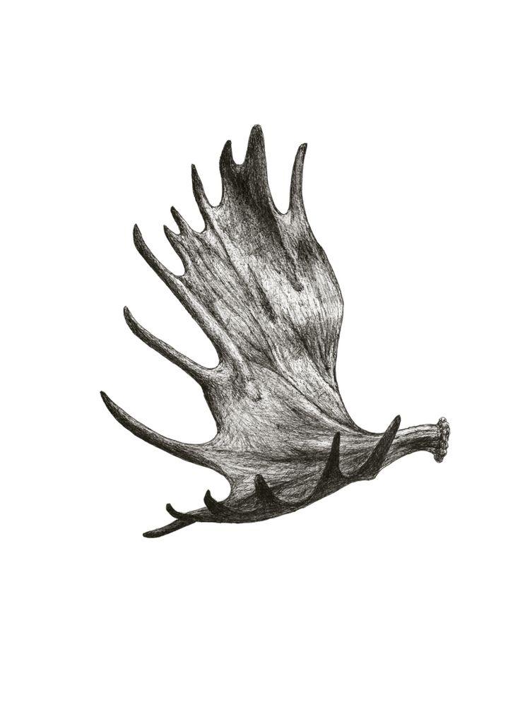 moose antler tattoo pinterest