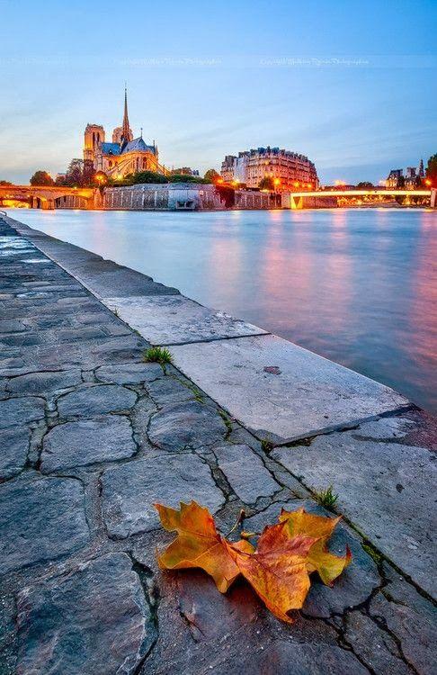 #Fall #Paris #France