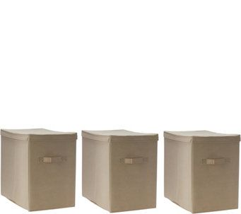 $29 Pop-It Set of 3 Collapsible Storage Bins with Lids - V34417