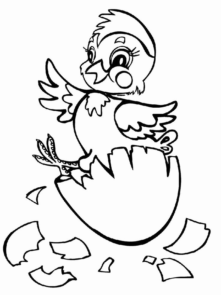Baby Chicks Coloring Page Lovely 10 Of the Most Adorable