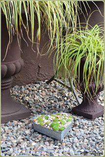 Trädgård i kruka   Jag har mer och mer insett hur bra det fungerar med perenner och gräs i krukor. De klarar sig väldigt bra trots den l...