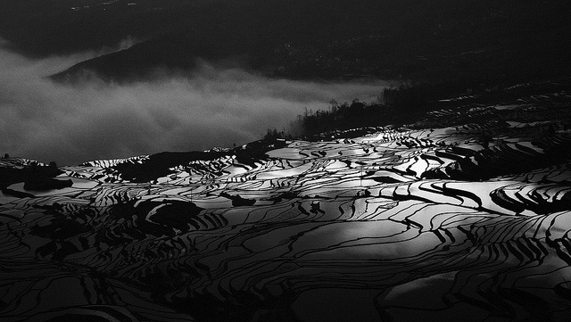 Hani Rice Terraces in Yuanyang  Yunnan - China