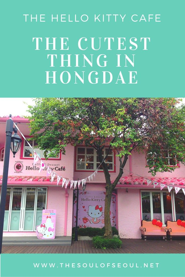 The Hello Kitty Cafe: The Cutest Thing in Hongdae. This themed cafe sits in the heart of Hongdae a lively district full of quirky and fun things to do. Must see if you like the fun out of the box things to do in Seoul.