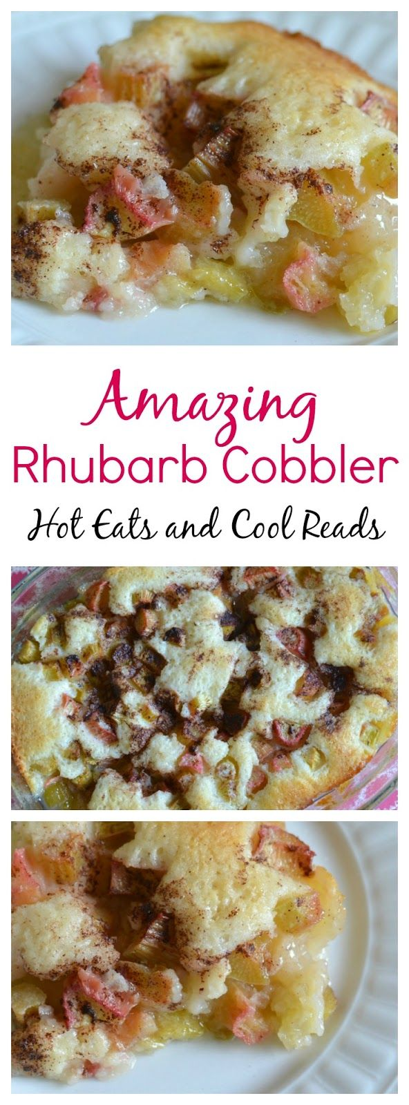 This lovely springtime dessert couldn't be any easier! Ready in less than an hour and so good with the sweet and tangy flavors! Serve with whipped cream or ice cream on top for an extra treat! Amazing Rhubarb Cobbler Recipe from Hot Eats and Cool Reads