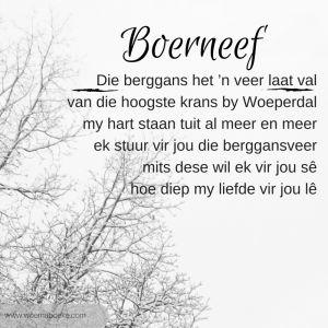 Die berggans deur Boerneef. Hoe inspireer jy 'n tiener om in Afrikaans te skryf? #woemaboeke