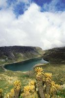 Paisaje de la laguna Verde, en el Parque Nacional Natural de los Nevados, cerrada en el fondo por el flujo de grandes coladas de lava volcánica, que en el pasado contribuyeron a su formación.