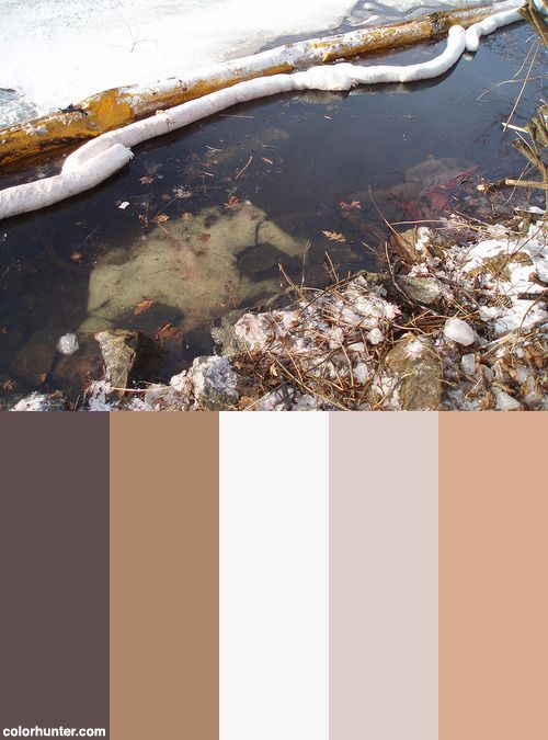 Massdep Response To A Heating Oil Spill To The Charles River, Cambridge, Ma Color Scheme from colorhunter.com