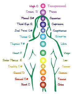 Vi består af 13 chakra'er. På figuren til højre, kan du overordnet se, hvilke chakraer der ligger sammen med dit stjernetegn. De chakra'er vi bruger mest, og som fokuseres med på…