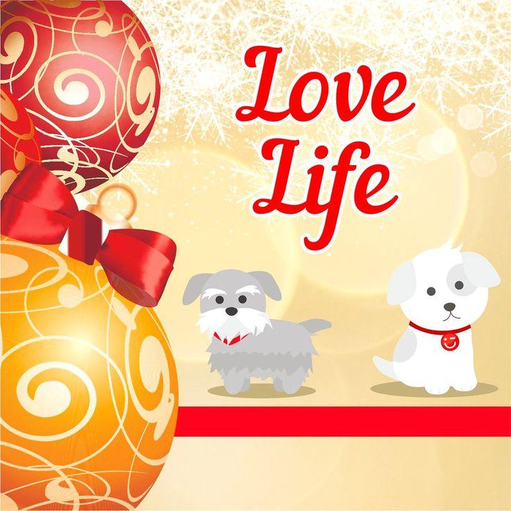"""🎄До Нового Года осталось совсем немного⏰ Пусть Новый год станет для Вас успешным и богатым хорошими событиями и знакомствами✨, желаниями и возможностями✨Желаем здоровья, мира, удачи и благополучия😌 Пусть Новый год принесёт радость, счастье и перемены в лучшую сторону😘😘😘 С н/п: Коллектив """"MINISO KAZAKHSTAN""""🤗 🎀🎀🎀🎀🎀🎀 #новыйгод #31декабря #зима #праздник #снег #2018 #собака #минисо #miniso #minisokz #подпишись #любижизнь"""