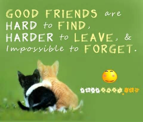 20 Ideal Best Friend Quotes | ThemesCompany