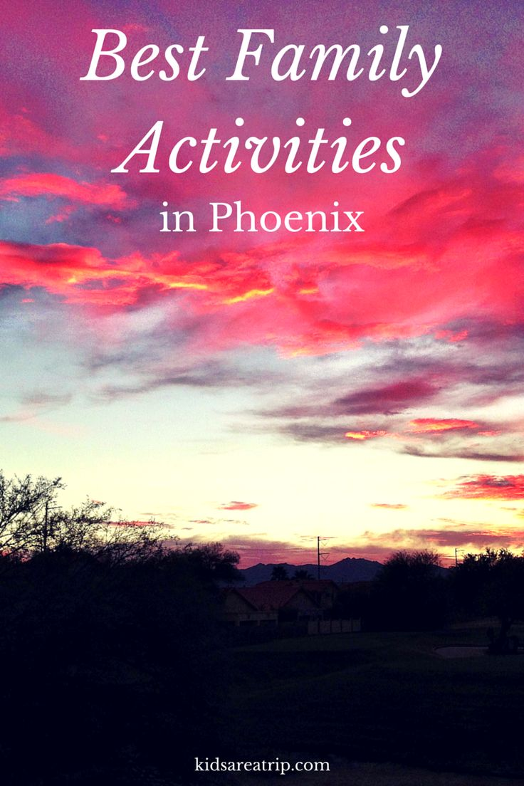 If you are looking for some of the best family activities in the Phoenix area, look no further. Here are our favorite things to do in the Valley of the Sun.